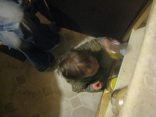 Oscar rearranging the cupboard