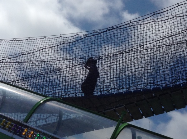 Oscar on suspension bridge