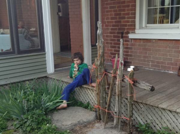 Oscar beside his 'farm fence'