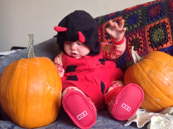 Ada in ladybug costume between pumpkins.