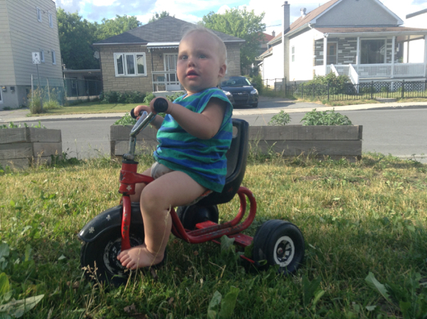 Ada on a tricycle on our front lawn.