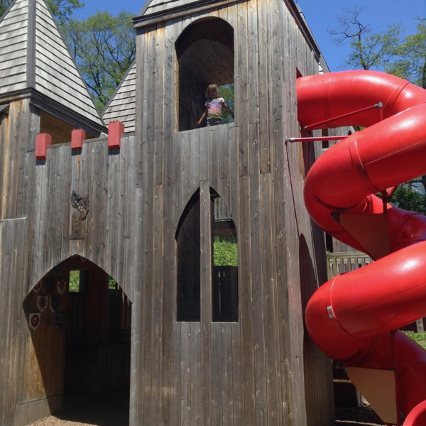 Viv in a two-story wooden tower with slide.