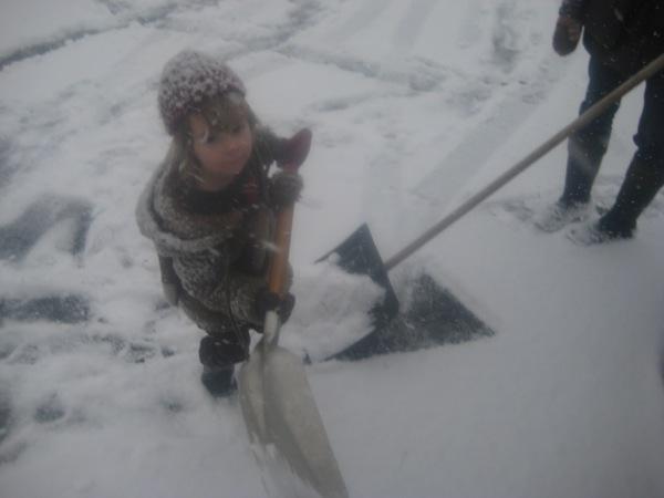 Oscar with his (car) shovel